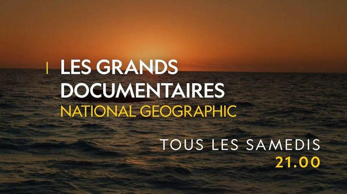 Les grands documentaires National Geographic | Bande annonce