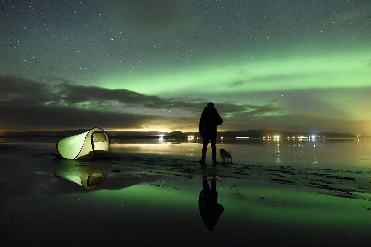 « Un homme et son chien campent près d'un lac tout en contemplant les aurores boréales. ...
