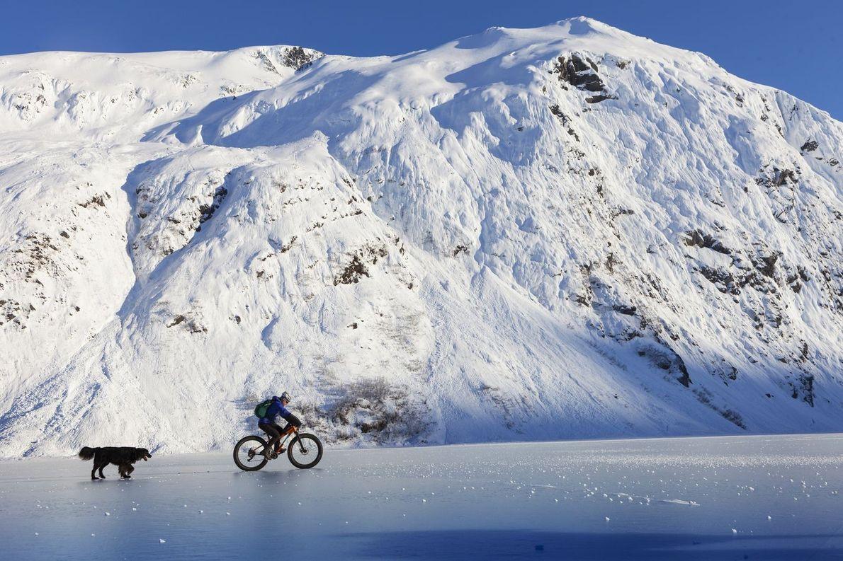 « Pendant l'hiver, Jody Barton traverse le lac Portage sur son vélo à pneus surdimensionnés, en ...