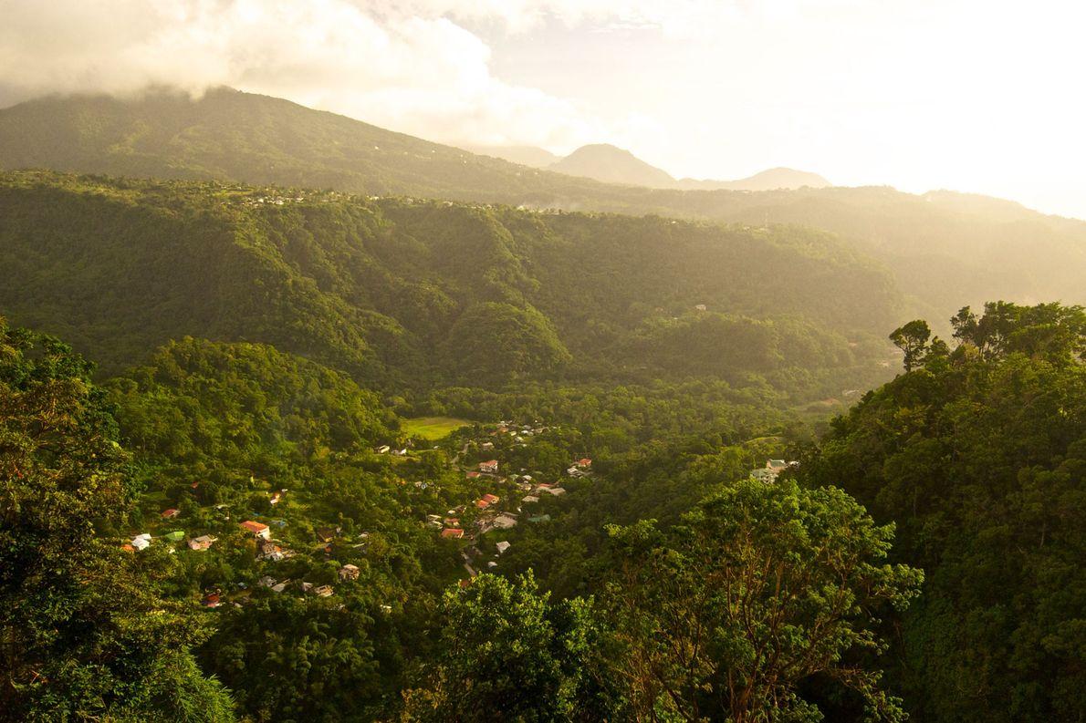 La Dominique, premier pays à interdire les objets en plastique à usage unique