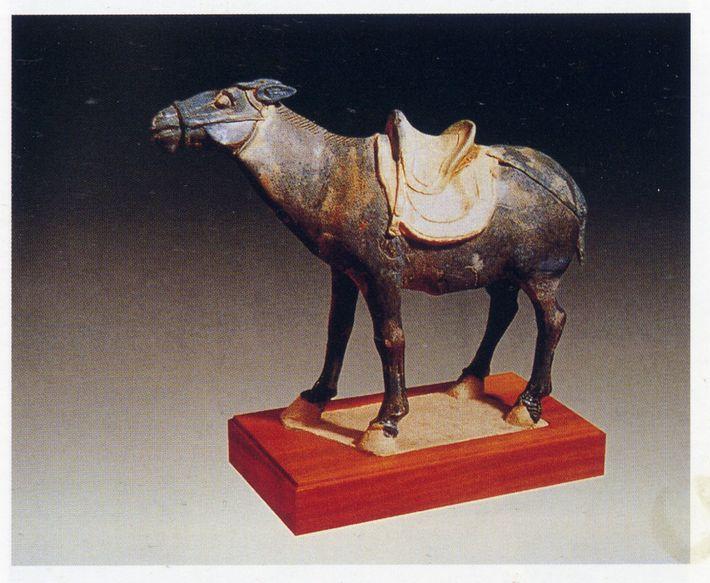 Une statuette d'âne de l'époque Tang.