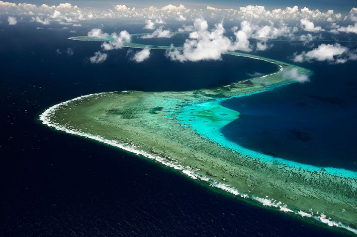 L'une des meilleures façons de comprendre un récif corallien, c'est de l'observer depuis les airs. Le ...