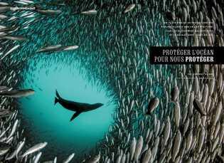 Pristine Seas : préserver l'océan pour nous protéger.