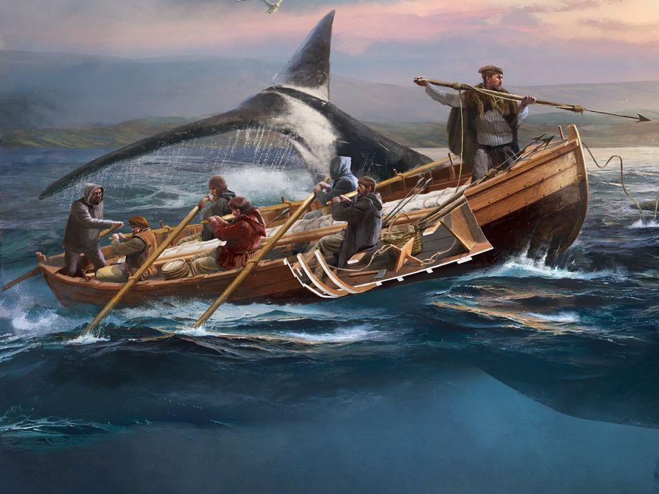 Dans la peau des premiers baleiniers basques