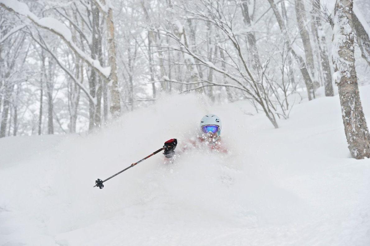 N'oubliez pas votre tuba si vous empruntez une des plus belles pistes skiables du Japon !