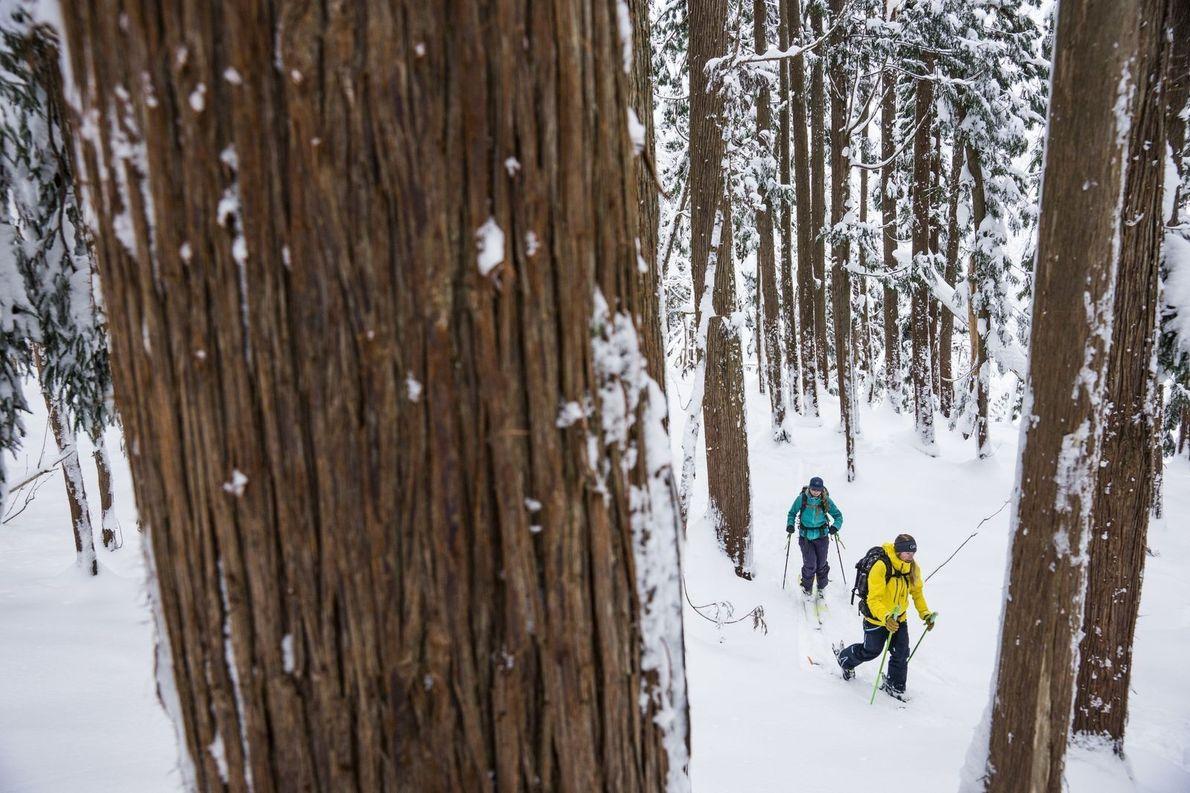 Les skieurs Allie Rood et Meredith Eades se lancent dans les endroits sauvages à travers la ...