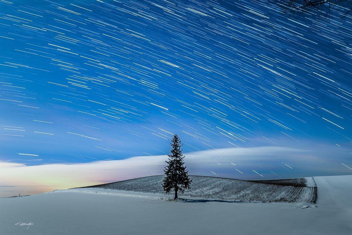 Un sapin se détache sur le blanc manteau de neige dans la nuit, à Hokkaido.