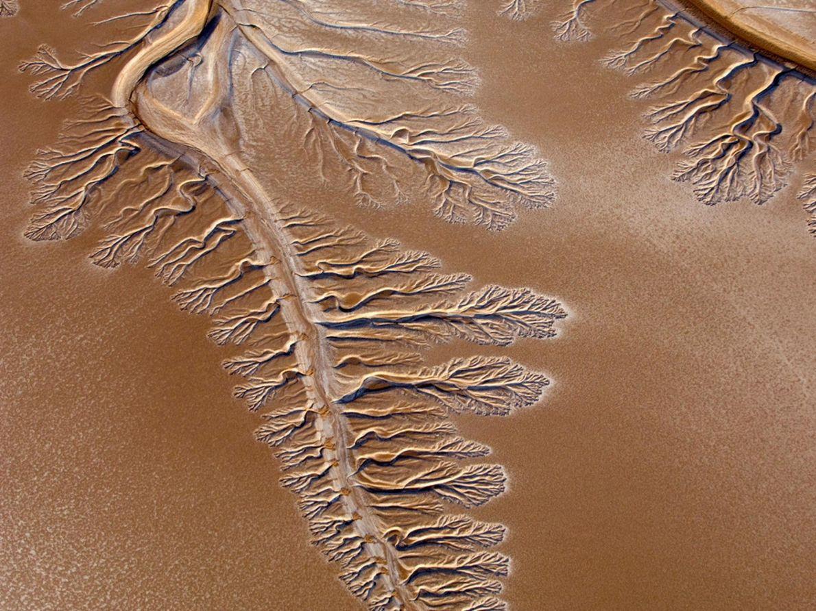 Le Colorado est l'un des cours d'eau les plus utilisés et les plus disputés du monde. ...