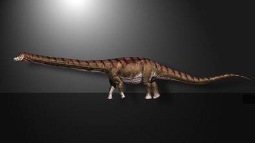 Patagotitan mayorum, Le plus grand dinosaure jamais découvert en Patagonie
