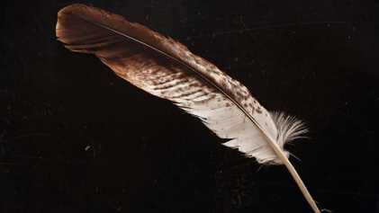 Les aigles dans la culture amérindienne