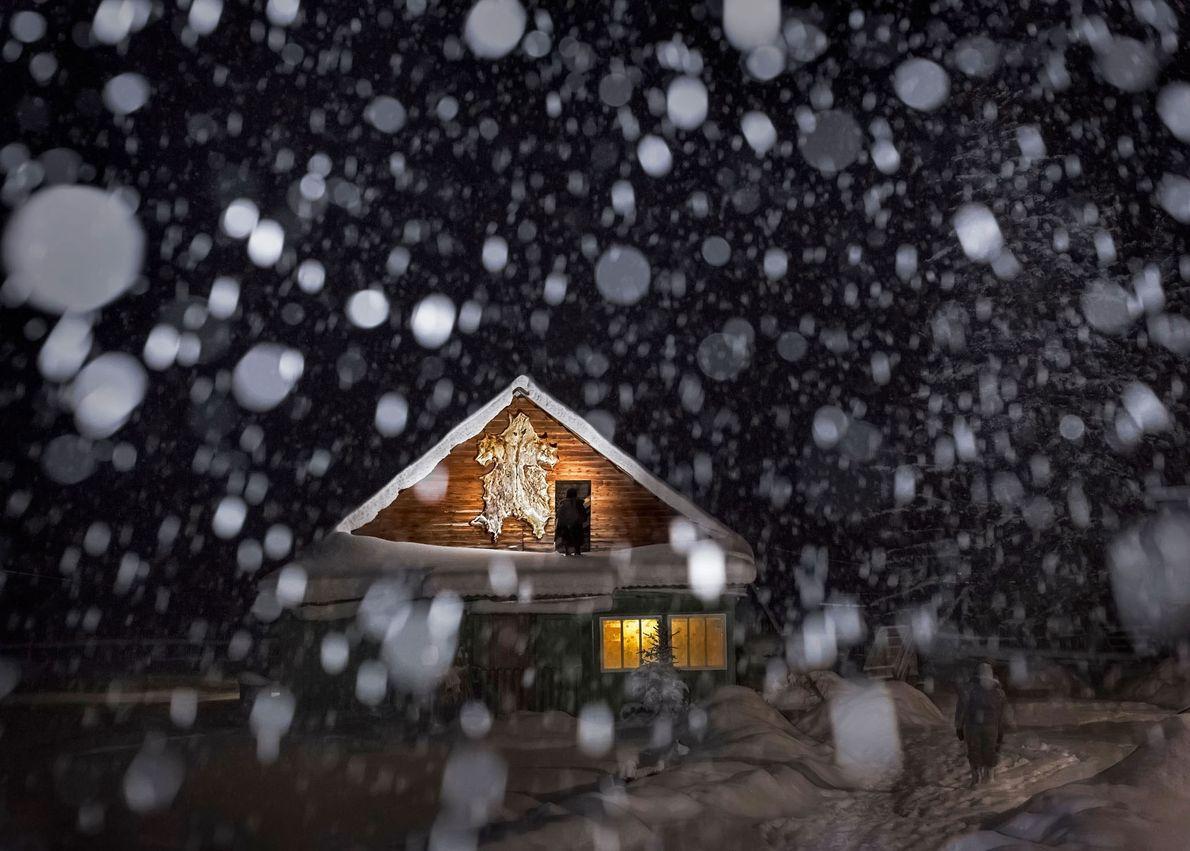 La peau clouée sur cette maison d'un village isolé de Sibérie est celle d'un ours qui ...