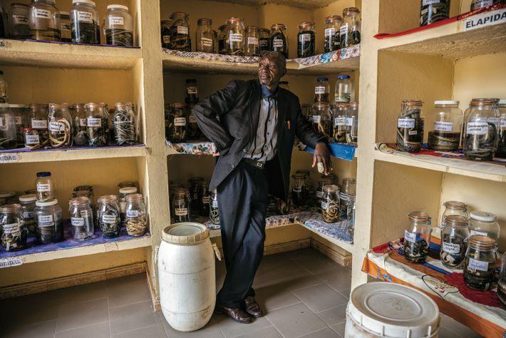 L'erpétologiste Mamadou Cellou Baldé se tient au milieu de la collection réunie par la clinique de traitement ...