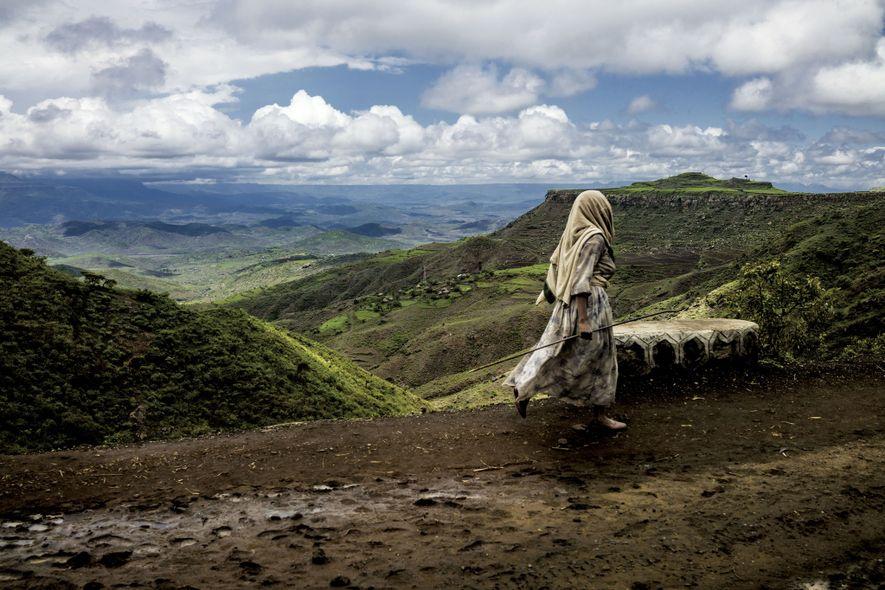 Sublimes, les plateaux éthiopiens sont aussi impitoyables : les bergers dépendent fortement des pluies saisonnières pour ...