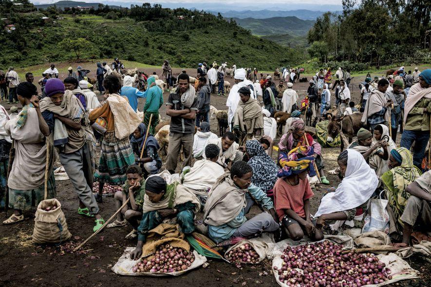 80 % de la population vit de l'agriculture en Éthiopie. Ce marché, qui se tient dans ...