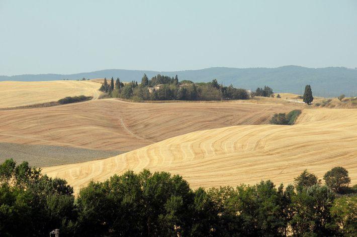 Le long du chemin de pélerinage La Via Francigena qui mène à Buonconvento, le paysage caractéristique ...