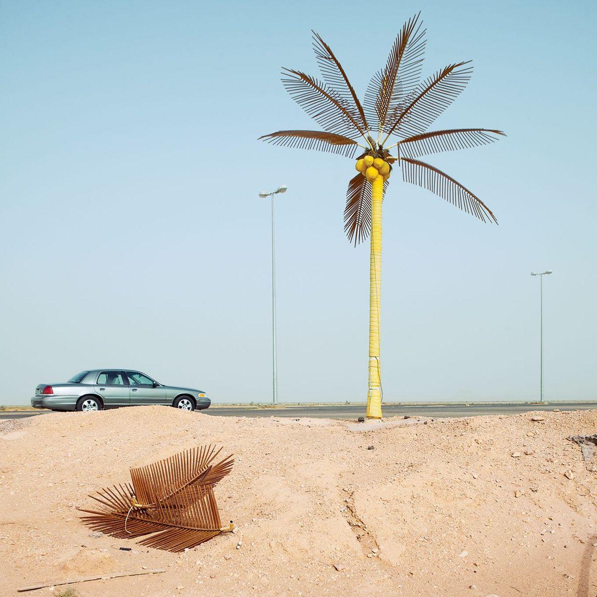 Un palmier artificiel à Duruma, en Arabie Saoudite.