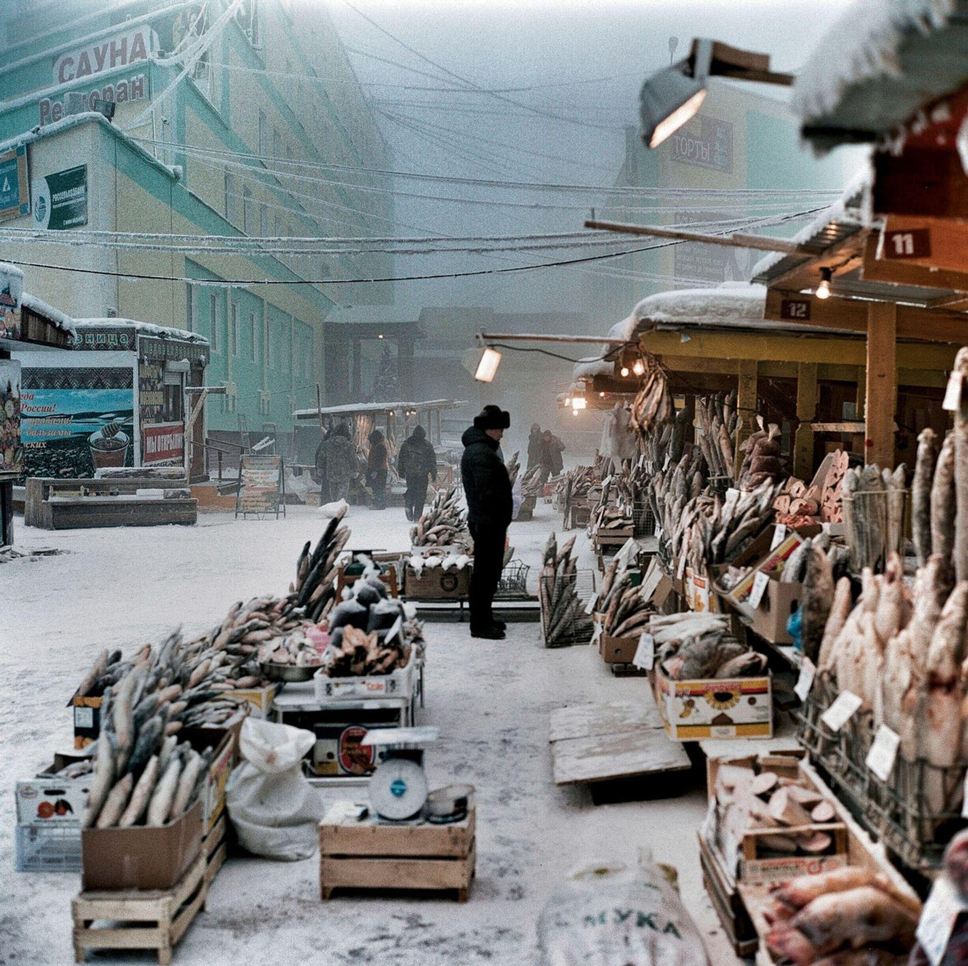 Le port de Iakoutsk sur la Lena permet de pêcher des poissons qui, dans le froid hivernal, restent parfaitement rigides sur les étals du marché.
