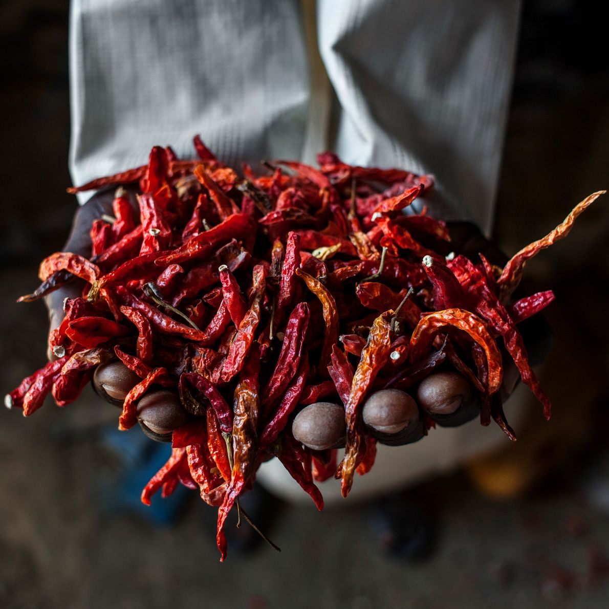 Les petits fermiers nigérians dépendent de matériels de moindre qualité, de marchés imprévisibles et du changement ...