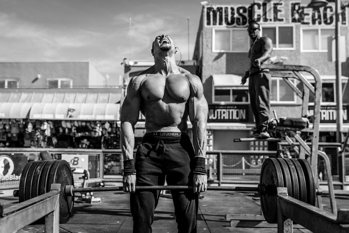 Tout en muscles