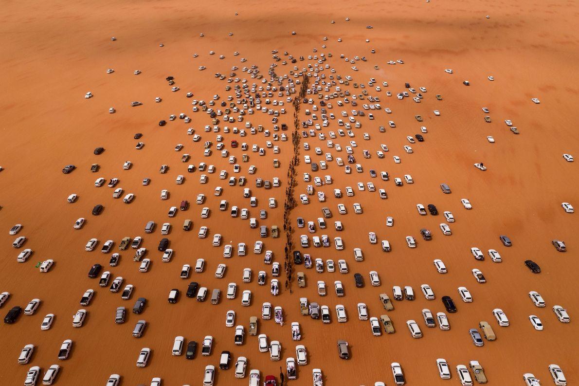 Camel Parade