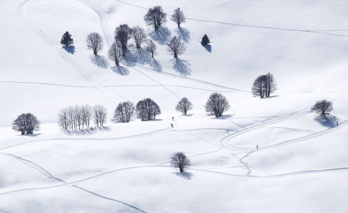 Ski printanier