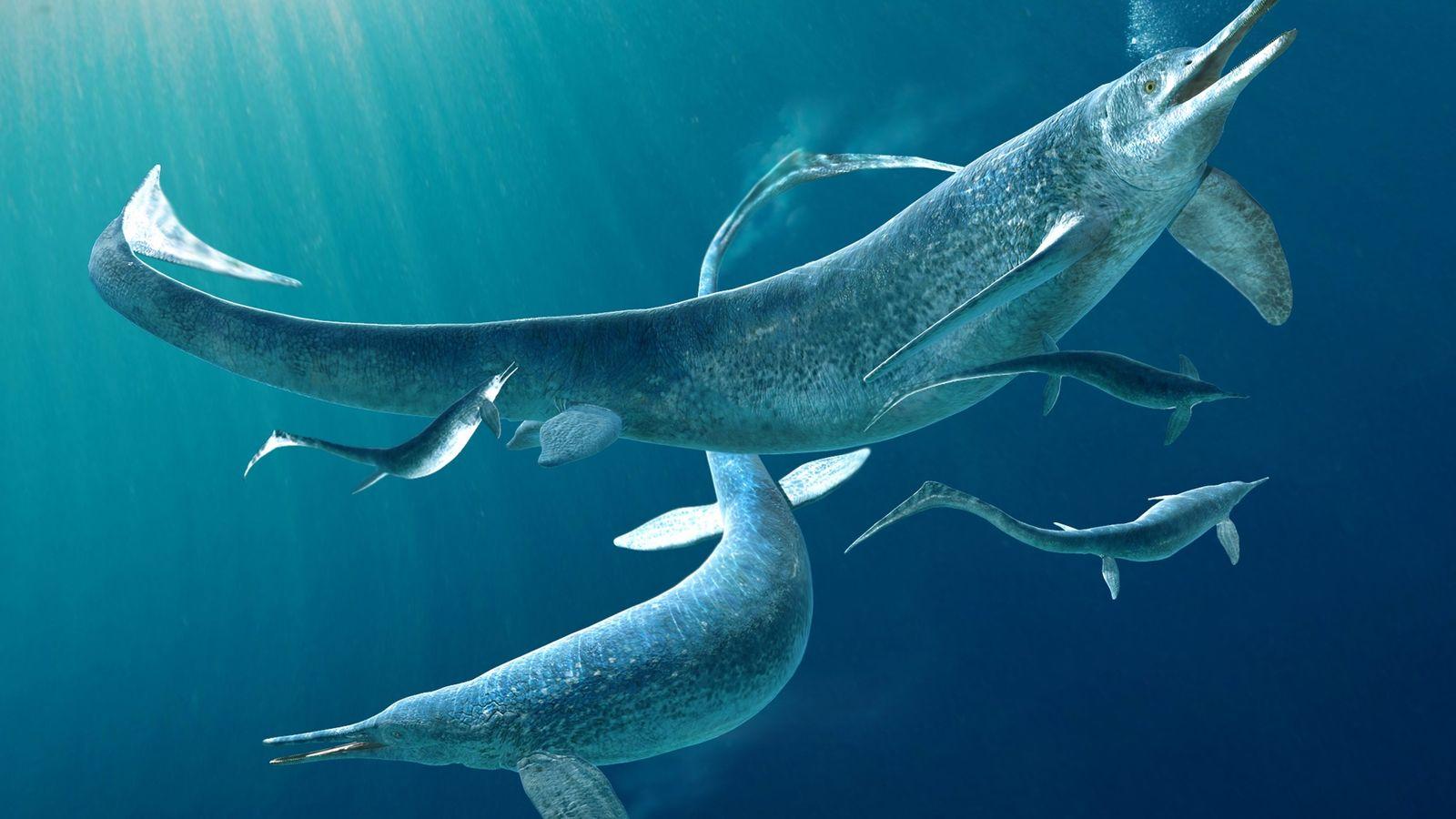 Cette illustration représente un groupe de Besanosaurus, un genre d'ichtyosaures. Il s'agit d'anciens reptiles marins qui ...