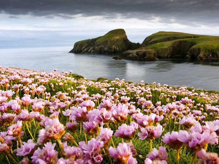 fair-isle-scotland_58605