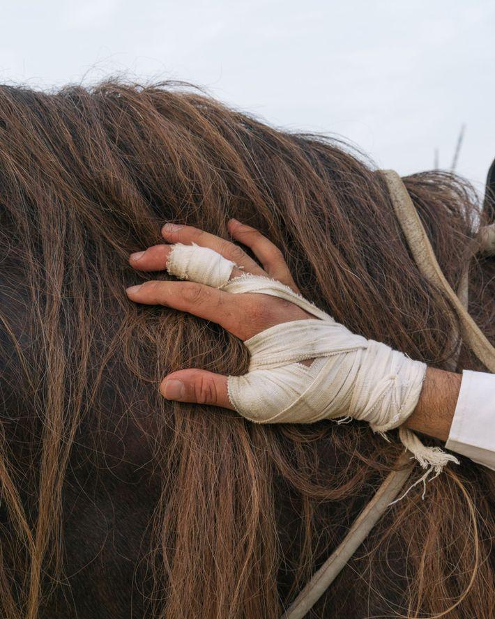 Au cours de la fantasia, on célèbre le lien entre le cheval et son cavalier.