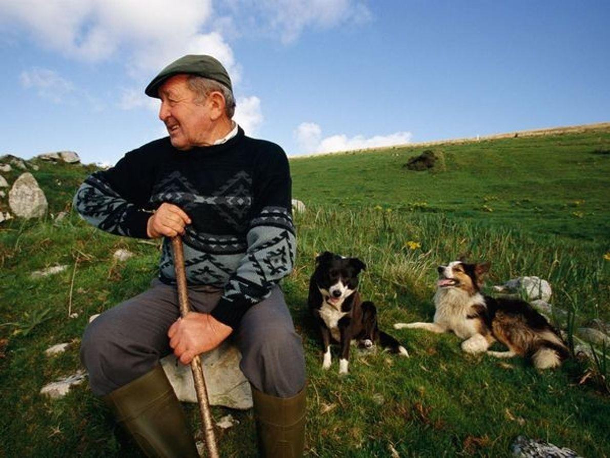 Agriculteur irlandais