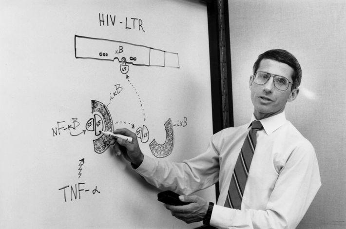 Le Dr Anthony Fauci discute avec les membres de son laboratoire lors d'une réunion le 31août1990 ...