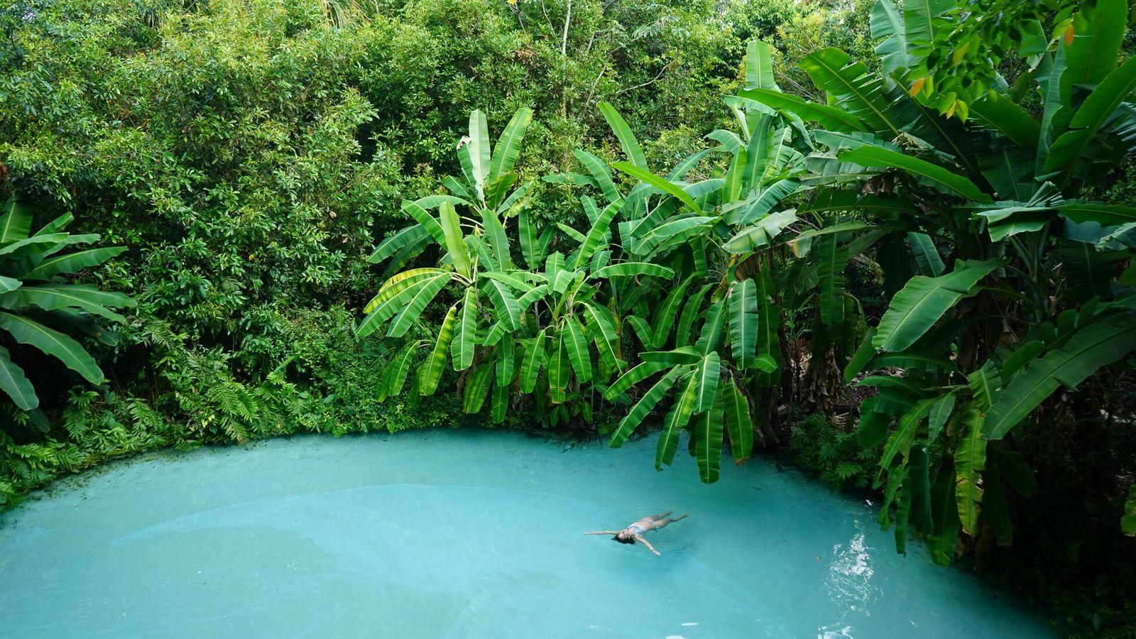 Dans le parc d'État de Jalapão, les fervedouros sont de superbes sources karstiques qui offrent une ...