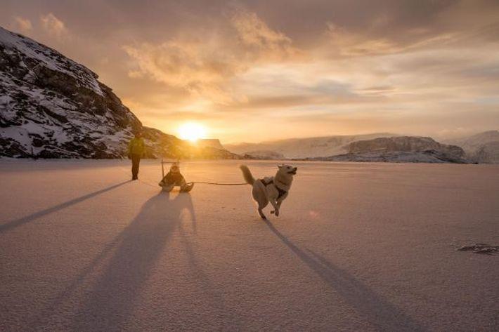 Au large du Groenland, Ghislain Bardout joue avec son fils Robin et leur chien Kayak, sur ...