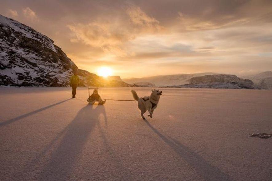 Au large du Groenland, Ghislain Bardout joue avec son fils Robin et leur chien Kayak, sur la banquise.