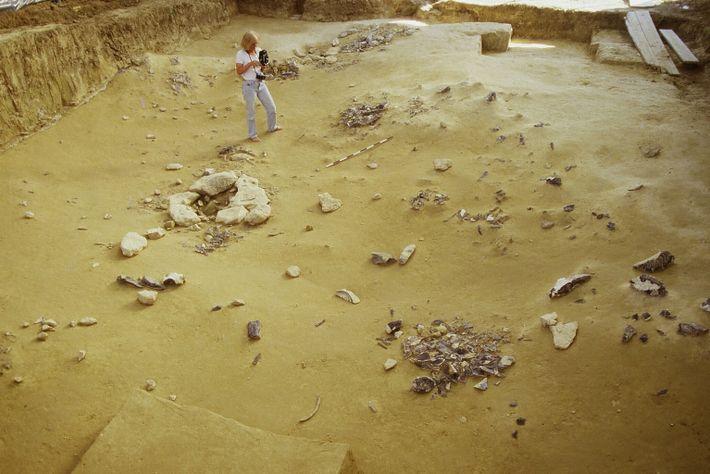 Depuis 1972, le camp de fouilles révèle les restes du passage d'un groupe de Magdaléniens. Dans ...