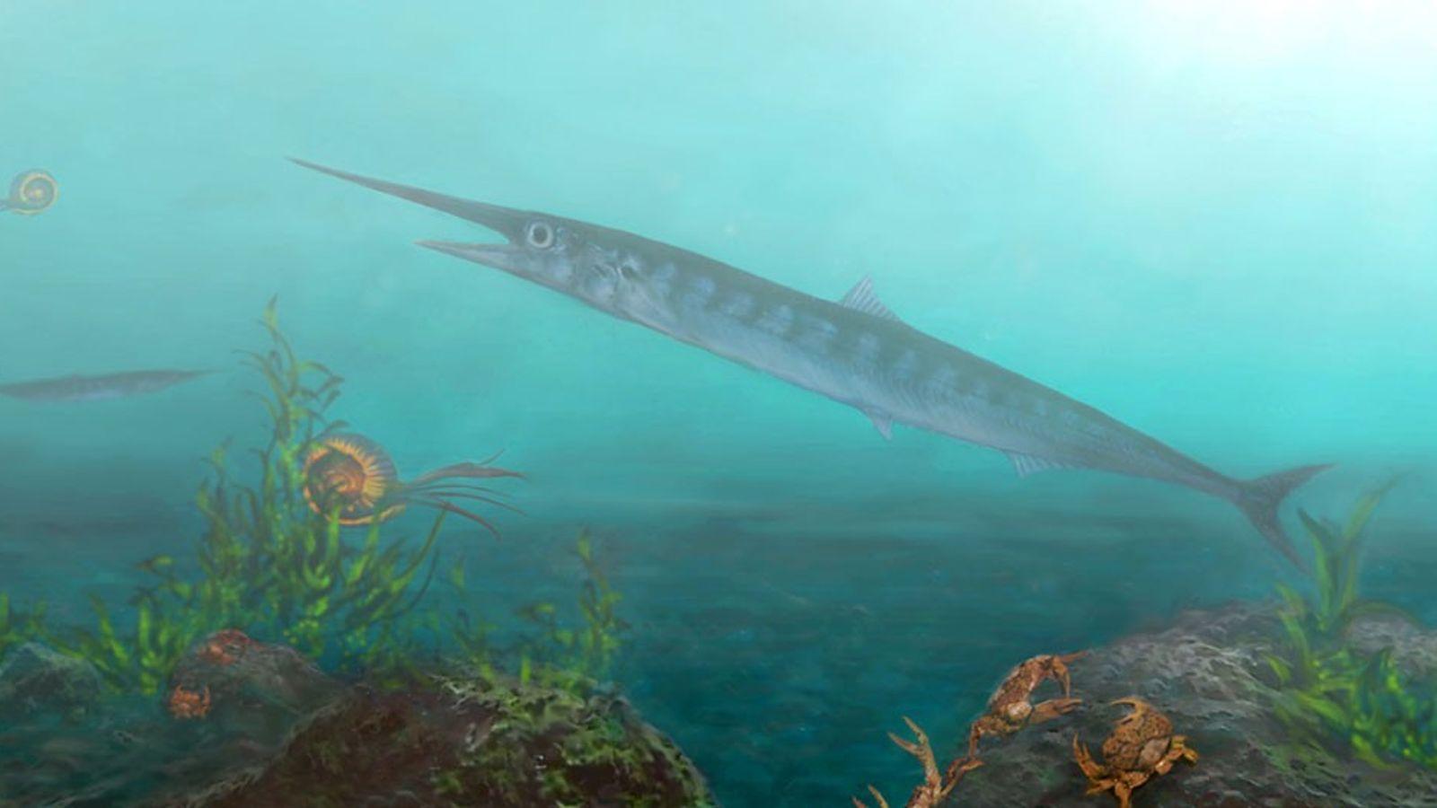 Reconstitution artistique du fossile dans son environnement naturel, entouré d'autres créatures comme les ammonites.
