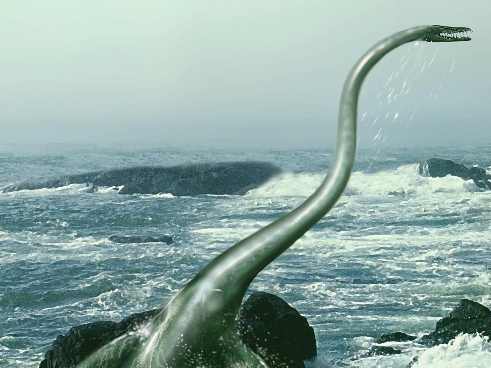 Cette illustration représente un élasmosaure évoluant à travers des eaux agitées. Un fossile découvert en Antarctique ...