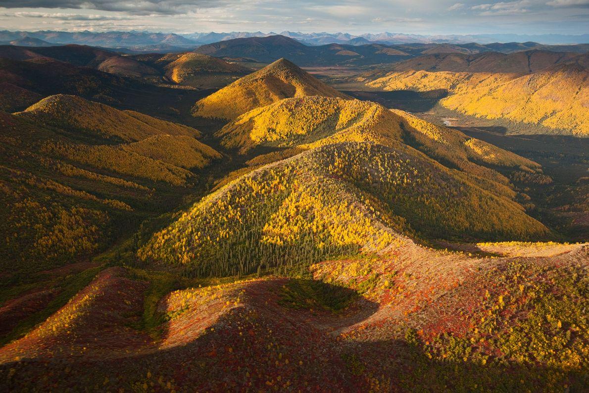 Situé dans le cercle arctique en Alaska, le parc national et réserve Gates of the Arctic est ...