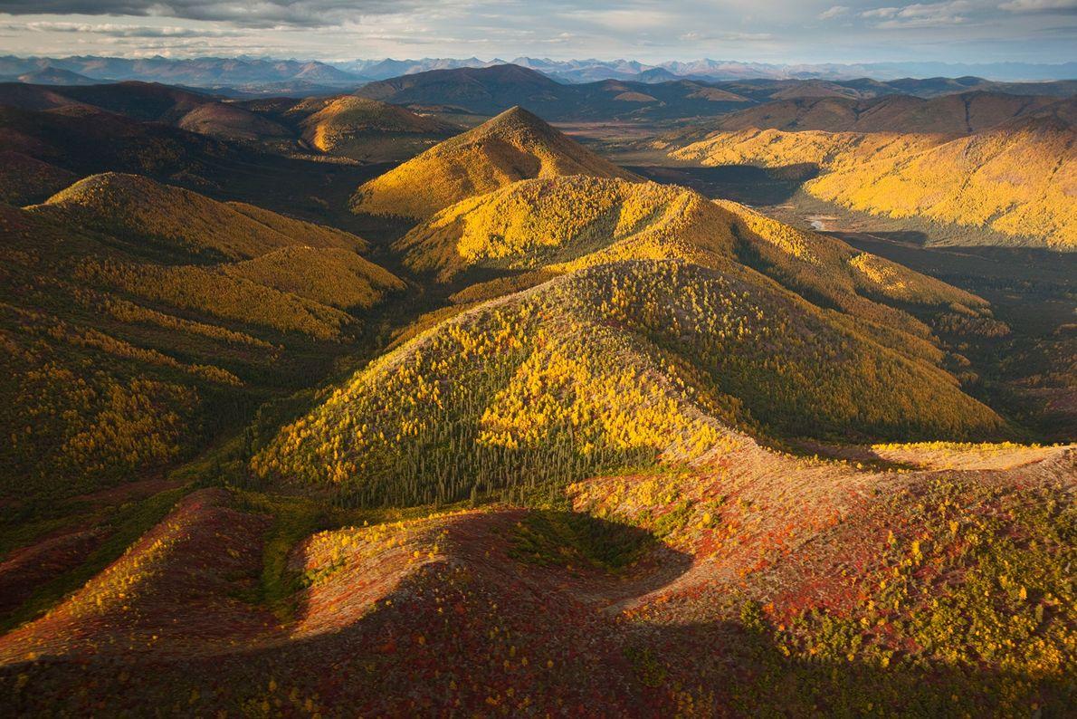 Situé au nord du cercle polaire arctique en Alaska, le parc national et réserve Gates of the ...