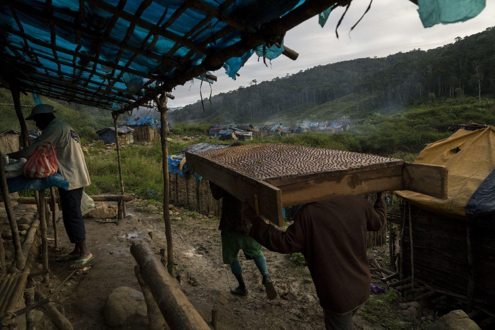 Dans le village de fortune d'Ambodipaiso, situé à quelques kilomètres de Tananarive, des hommes transportent un ...