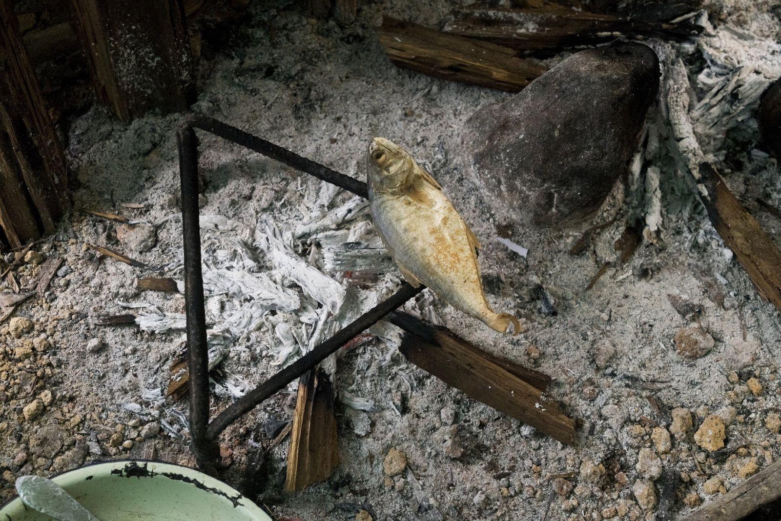 Un poisson cuit au-dessus des braises dans une petite cahute située à proximité des mines. L'utilisation ...