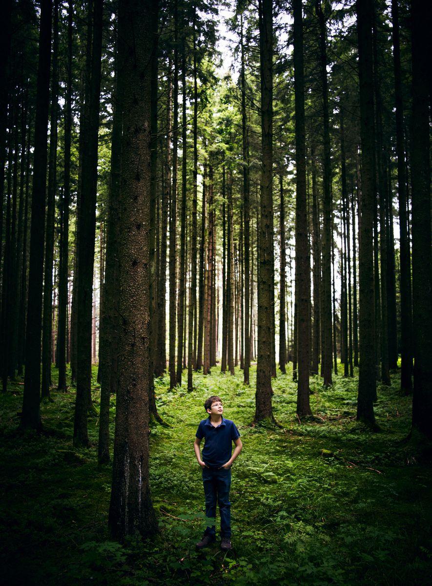 Ici photographié en août 2011, Felix Finkbeiner a dédié sa vie à la plantation d'arbres. L'ONU ...