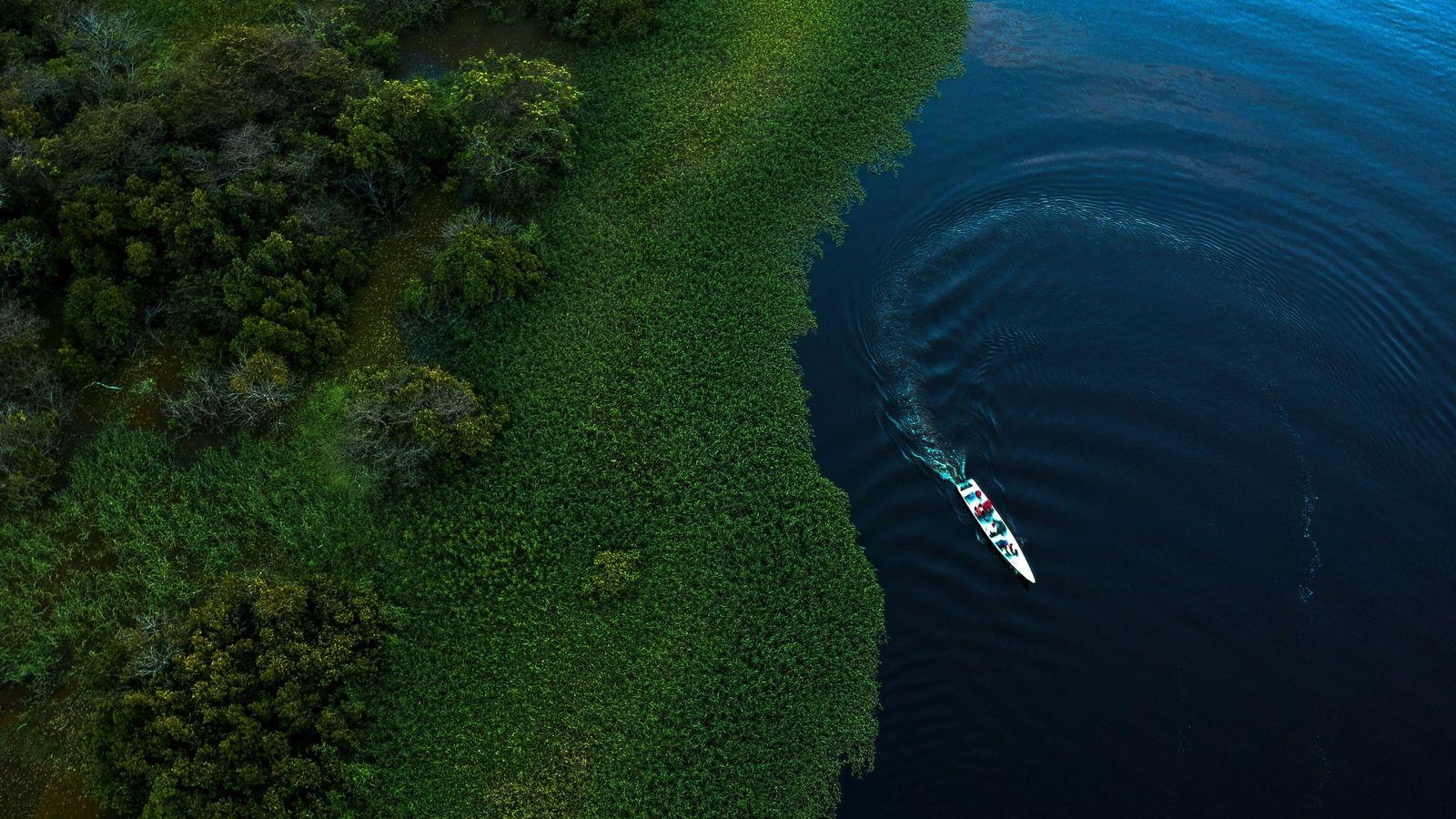 maciel-lake-amazon-sediment