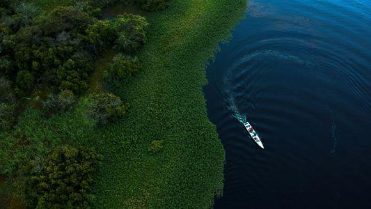 La forêt amazonienne aurait-elle contribué au petit âge glaciaire du 17e siècle ?