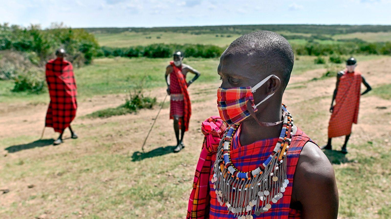 Dans la réserve nationale du Masai Mara au Kenya, les tribus ont vu leur activité baisser pendant ...