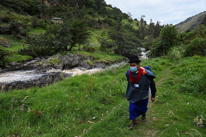 Anselmo Tunubala, un infirmier autochtone de l'ethnie Misak, arpente la forêt colombienne à la recherche de personnes ...