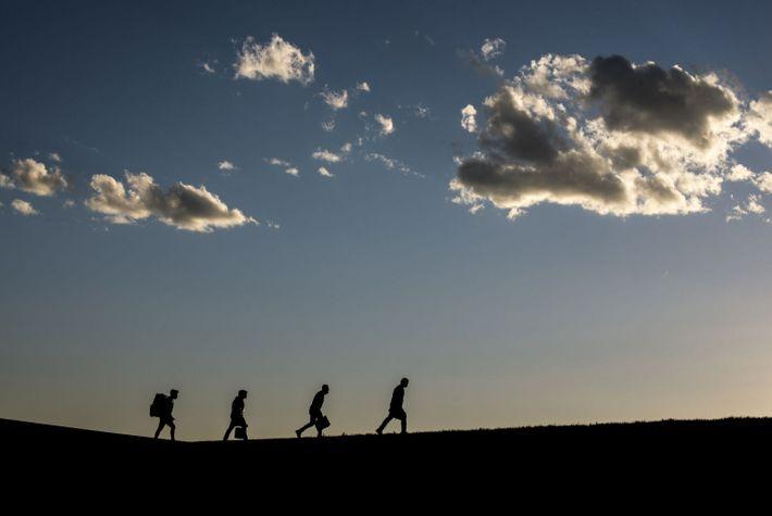 Les silhouettes de soignants se dessinent à l'horizon tandis qu'ils traversent un champ avec des glacières ...