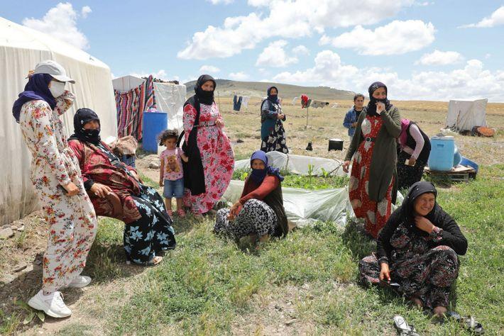 Dans le village d'Oguzlar, en Turquie, des ouvrières agricoles saisonnières attendent d'être vaccinées par les soignants ...