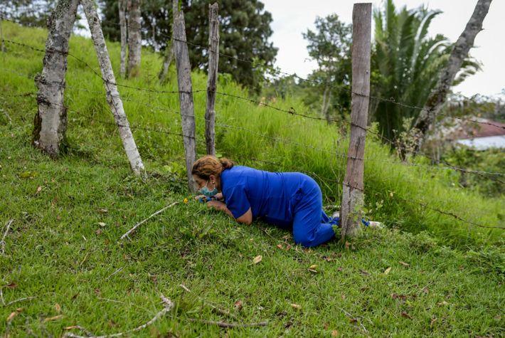 Une infirmière rampe sous une clôture de fils barbelés pour passer d'une maison à l'autre lors ...