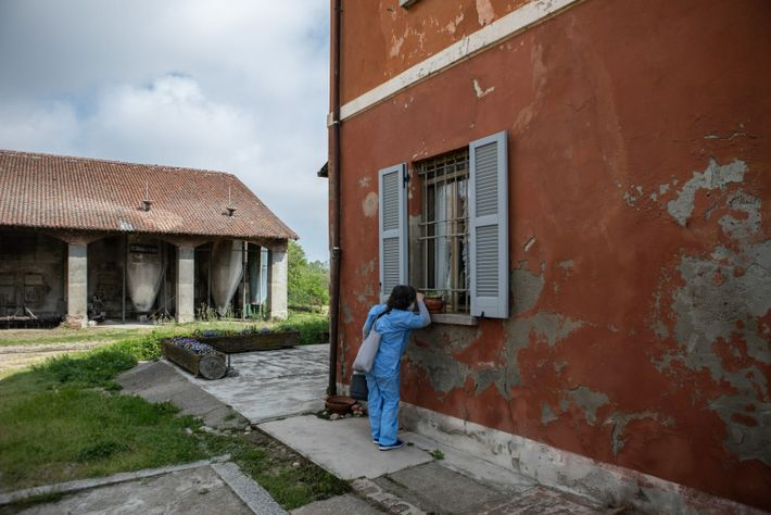 Une infirmière regarde par la fenêtre d'une ferme lors d'une campagne de vaccination à Somaglia, en ...