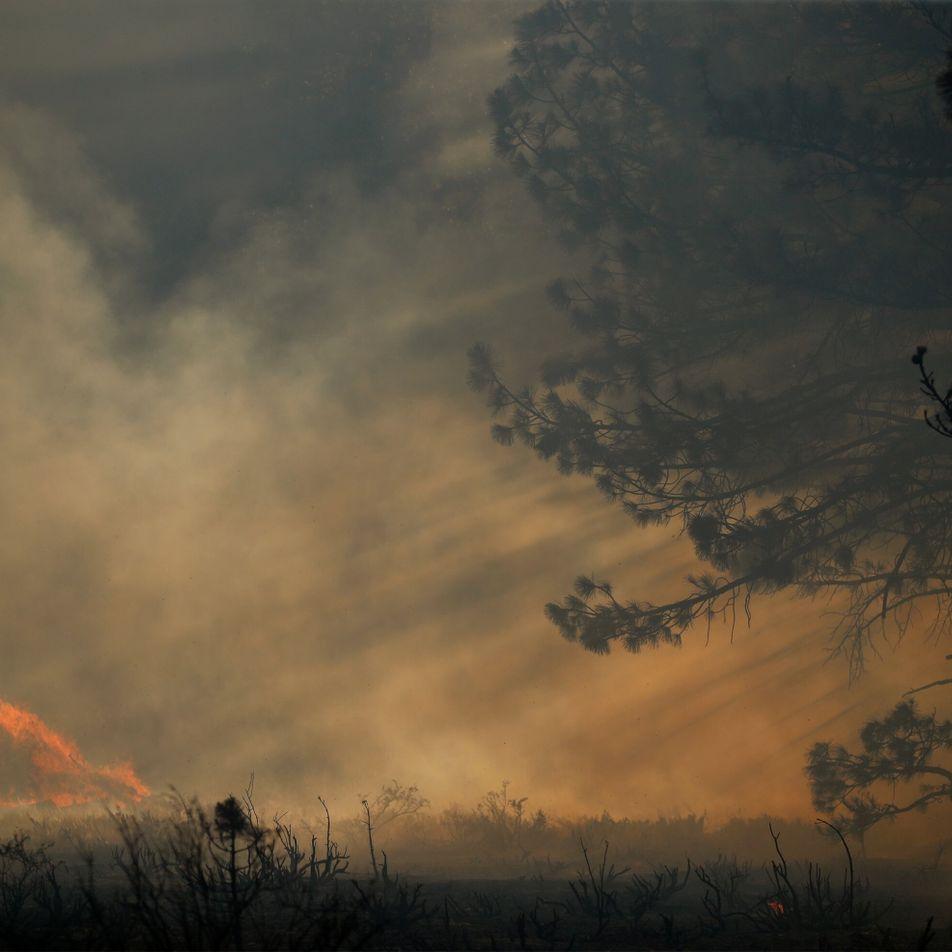 Comment la fumée des feux de forêt refroidit-elle notre planète ?